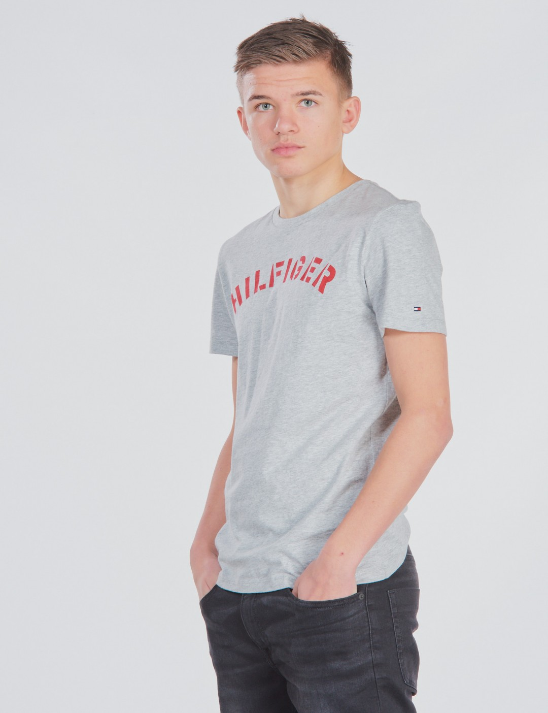 Tommy Hilfiger ESSENTIAL TOMMY GRAPHIC TEE